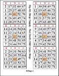 Where to rent BINGO CARDS - 450 PACK in Duluth MN