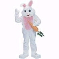 Where to rent EASTER BUNNY COSTUME in Duluth MN
