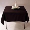 Where to rent TABLE CLOTH - 52  SQUARE COLORED in Duluth MN